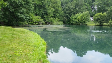 Reduce algae and weeds with Pond aeration