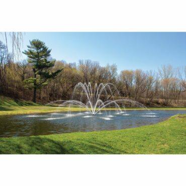 Magnolia Fountain Pattern