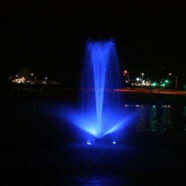 Blue Linden