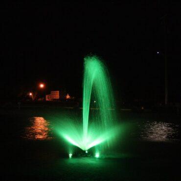Green Linden