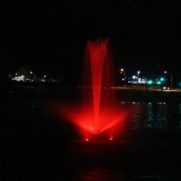 Red Linden