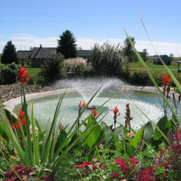 Online Store by Pond Lake Maintenance